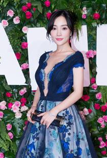 李小璐获时尚星秀年度大奖