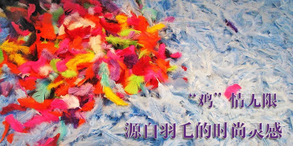 """""""鸡""""情无限 源自羽毛的时尚灵感"""